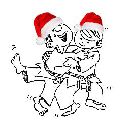 Kerststage Judoclub Geetbets
