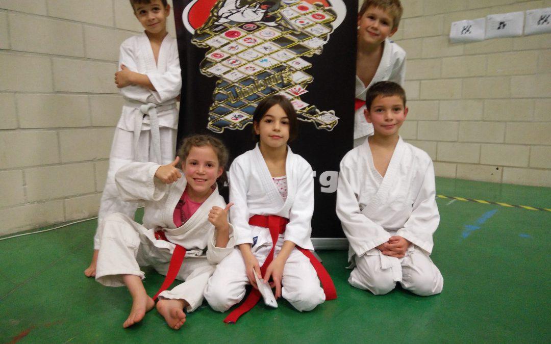 Jongste Betse fighterkes aan de slag in Dilsen